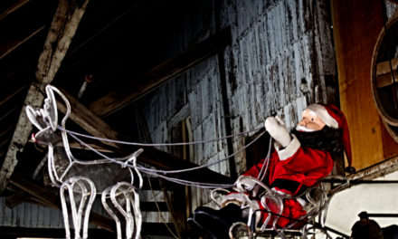 Veranstaltungen im Dezember Adventszauber & Winterzauber
